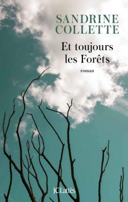 CVT_Et-toujours-les-Forets_4992
